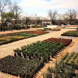 Photo Of Austin Plant Supply Tx United States