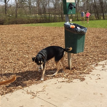 Swope Park Off Leash Dog Park