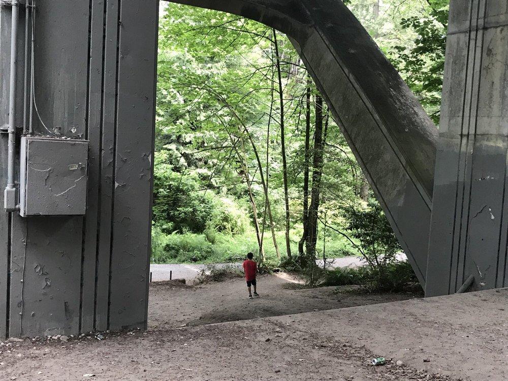 Cowen Park: 5849 15th Ave NE, Seattle, WA