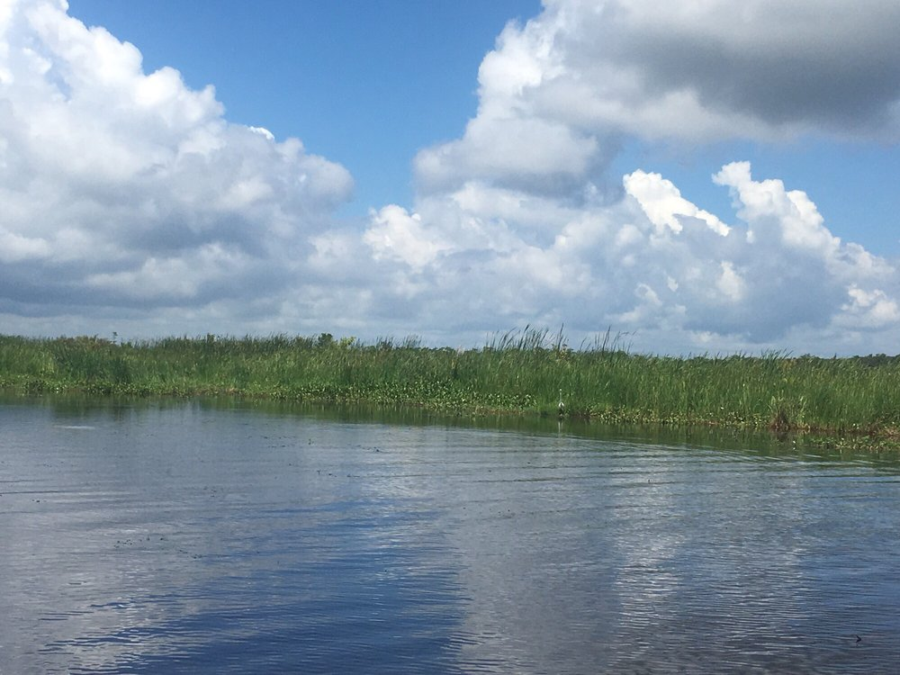 New Orleans Swamp Tours: 4575 Jean Lafitte Blvd, Lafitte, LA