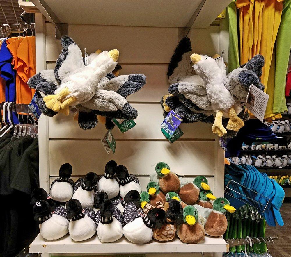 Ducks at gift shop - Yelp