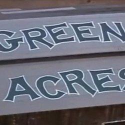 green charter township