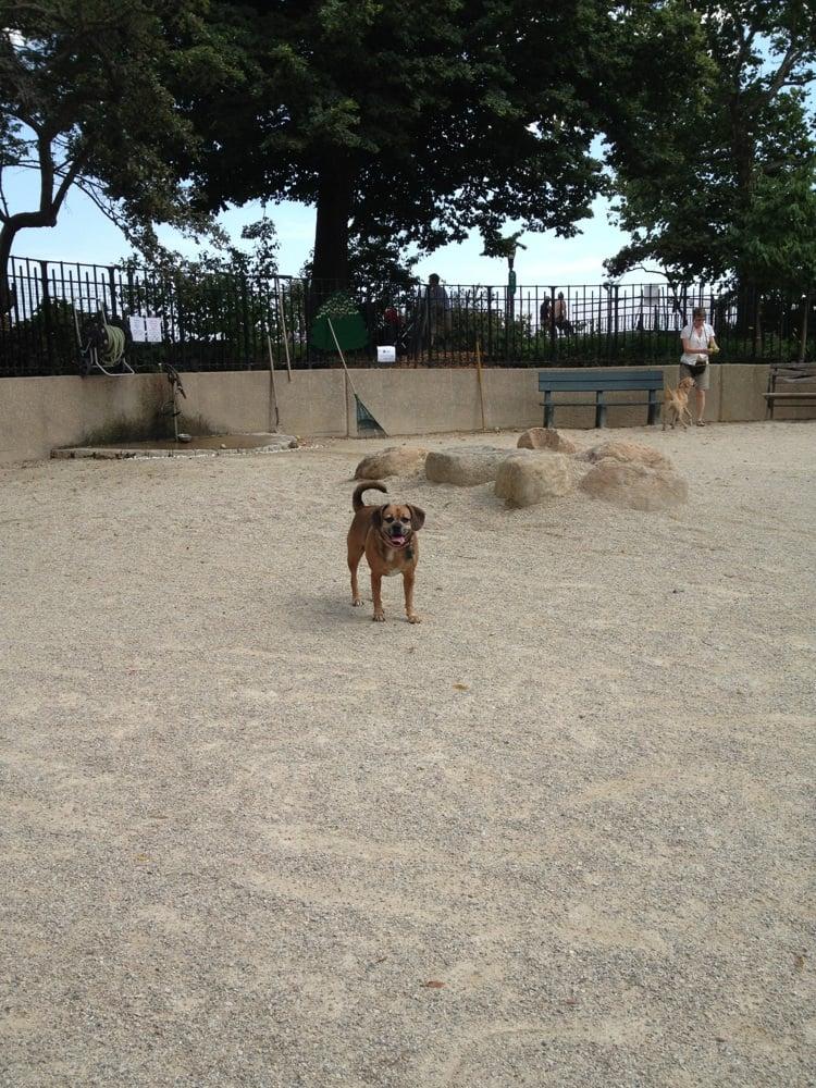 Carl Schurz Park Dog Run