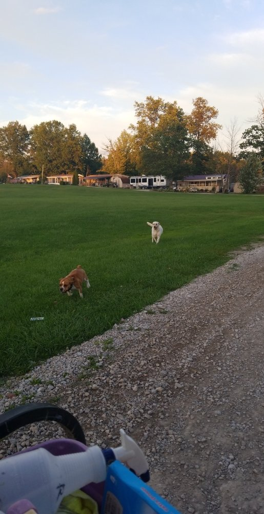 Town And Country Camp Resort: 7555 Shilling Rd, West Salem, OH