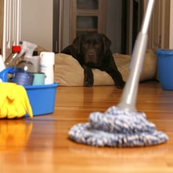 Los Angeles Maid Services 45 Reviews Home Cleaning