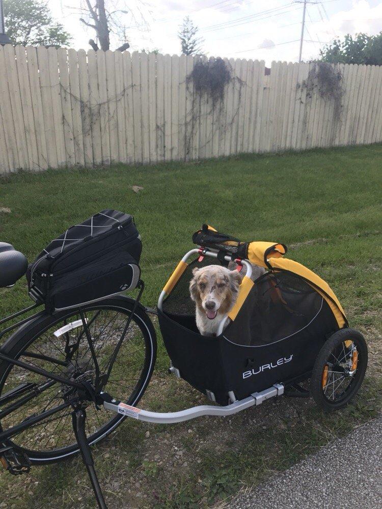 Vitesse Cycle Shop: 206 S Linden St, Normal, IL