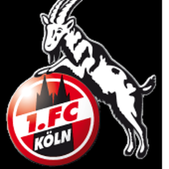 Image result for 1. FC koln funny