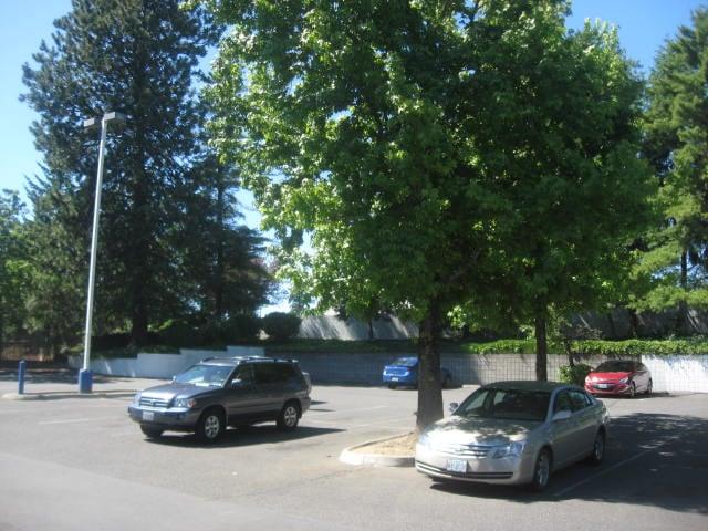Big 5 Sporting Goods: 12339 SE Stark St, Portland, OR