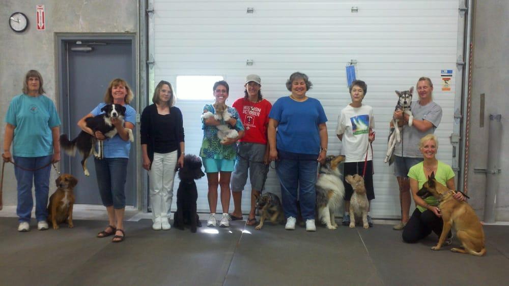 Dog Training Burnsville Mn