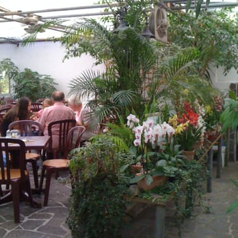 Caf orchidee orchideen netzer caf birkenau hessen deutschland beitr ge - Marc de cafe orchidee ...