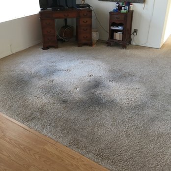 carpet cleaning moreno valley sofa cleaning yelp photo of pinks carpet cleaning moreno valley ca united states 176 photos 125 reviews