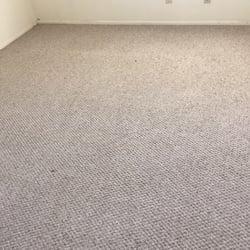 Eco Carpet Cleaning 37 Photos Amp 10 Reviews Carpet