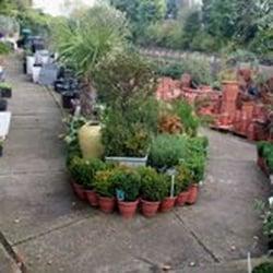 Photo of Dulwich Pot & Plant Garden - London, United Kingdom