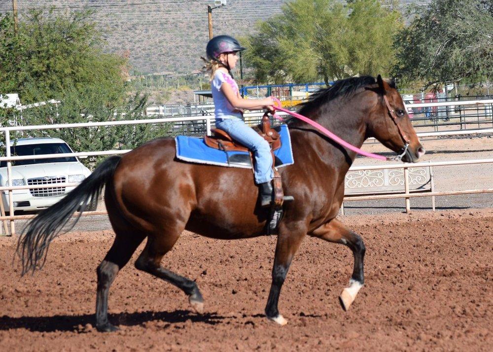 Kira's Dream Horses