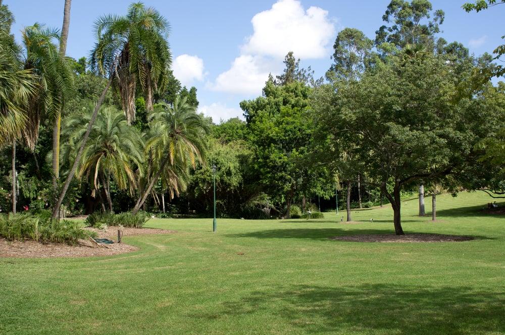 Brisbane City Botanic Gardens 74 Photos 22 Reviews Park Forests Gardens Point Alice St