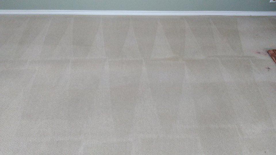 Barefoot Carpet Care