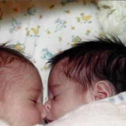 Apologise, but, lactation twin lesbian