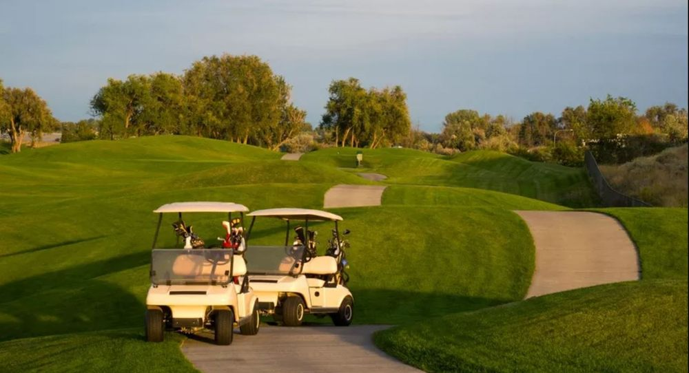 Life Path Carts: Auburn, GA
