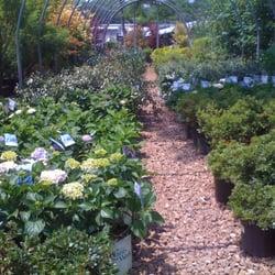 Photo Of Hewitt Garden Design Center Franklin Tn United States
