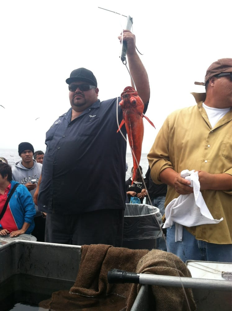 Weighing the biggest catch of the day for the jackpot yelp for Marina del rey fishing report