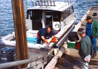 Glacier Bay Sportfishing: Gustavus, AK