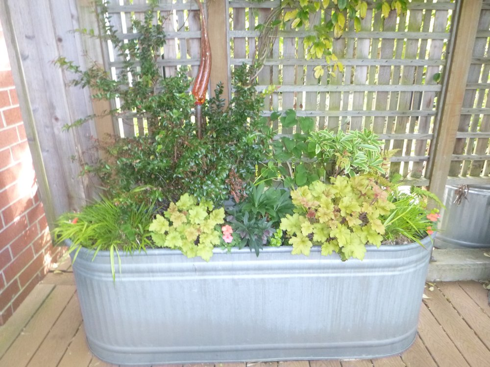 Low Maintenance Container Planting Yelp