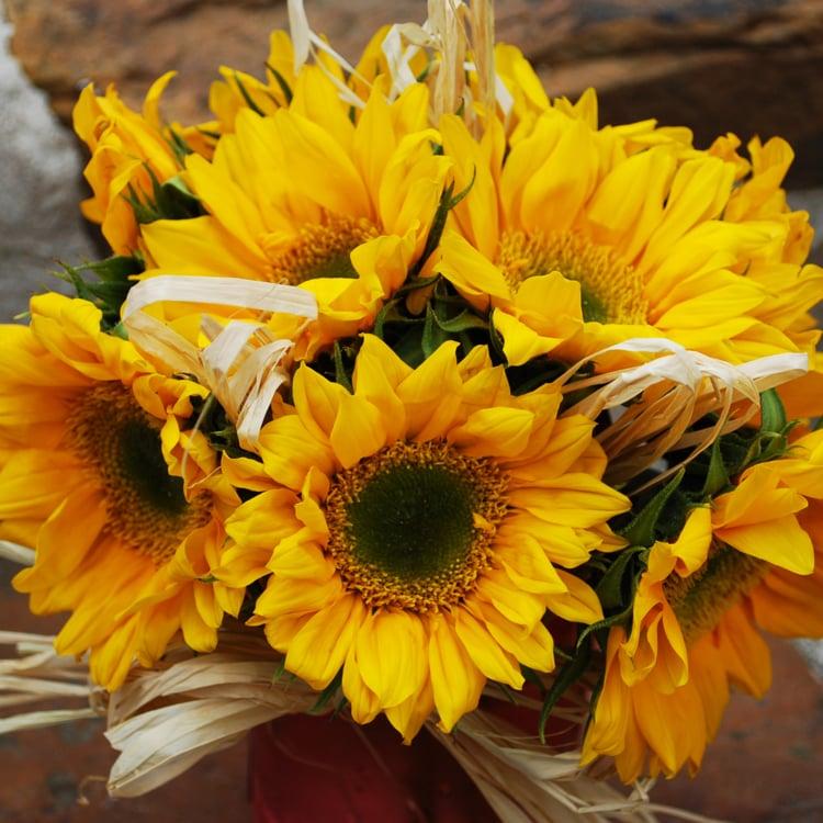 MAS Floral: 105 Wood Forest Rd, Kingsland, TX