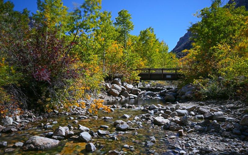 Thomas Canyon Campground: Thomas Canyon Campground, Spring Creek, NV