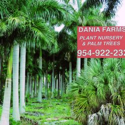 Photo Of Dania Farms Fl United States