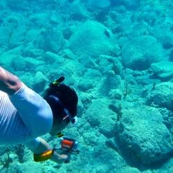 Photo Of Snorkel Panama City Beach Fl United States