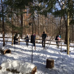Brecksville Nature Center Chickadees