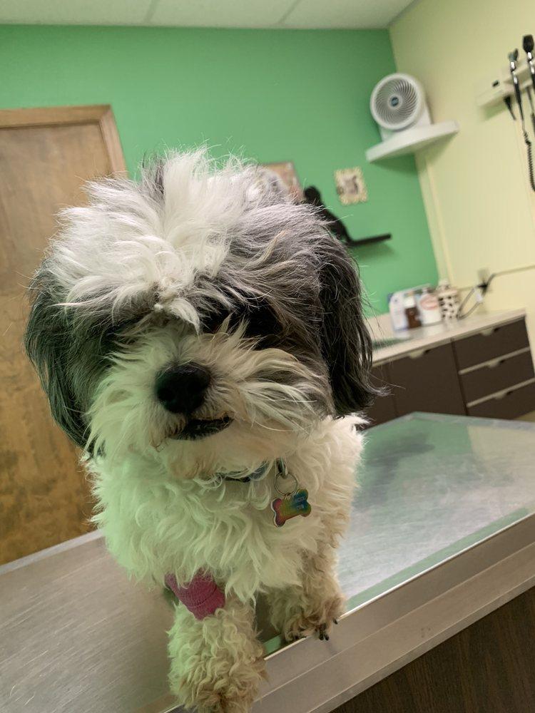 Great Plains Pet Hospital: 2224 N Anderson Ave, Newton, KS