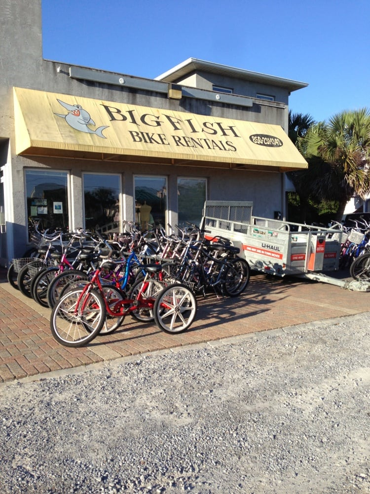 photos for big fish bike rentals yelp