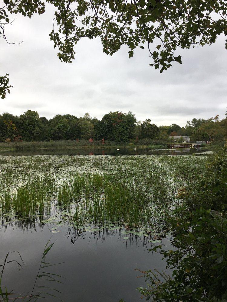 Peconic River At Edwards Avenue Fishing: Edwards Ave, Manorville, NY
