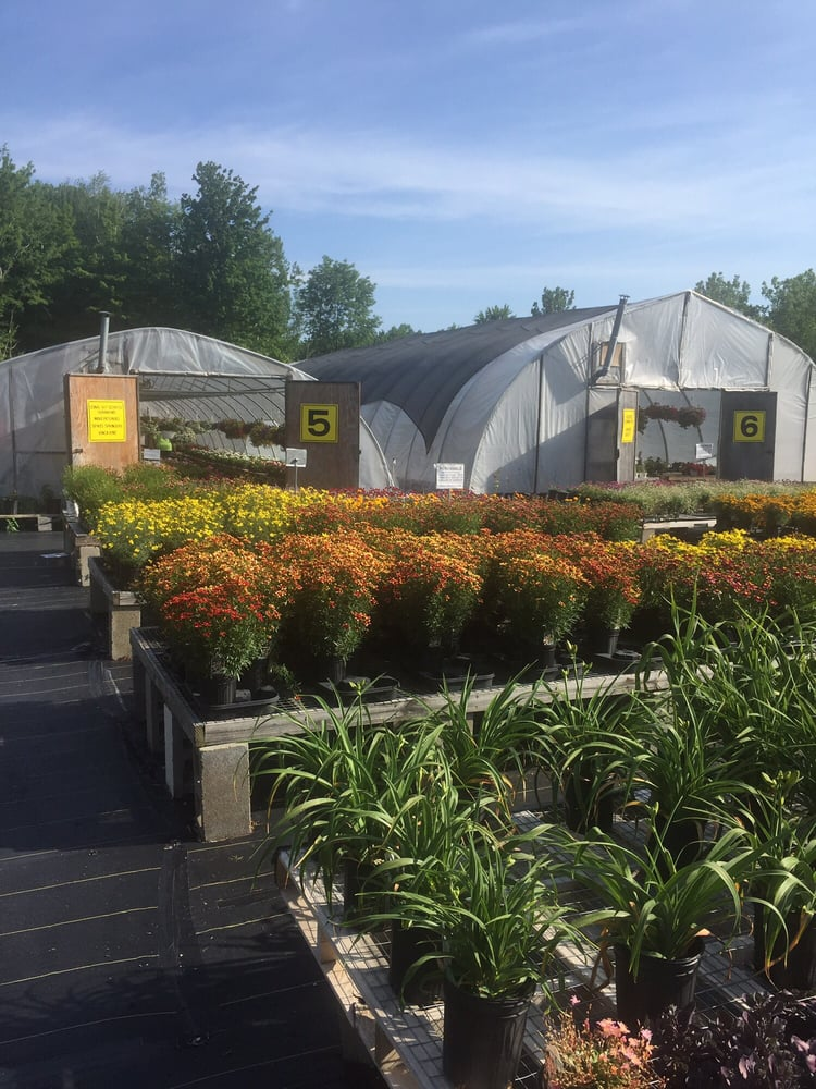 Plantscape Greenhouses: 7464 Hathaway Dr, Fairview, PA