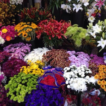 Mille Fiori - 13 Photos & 27 Reviews - Florists - 4125 Piedmont ...