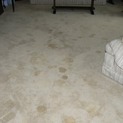 Photo of Skyline Carpet Cleaning - Littleton, CO, United States. I call this