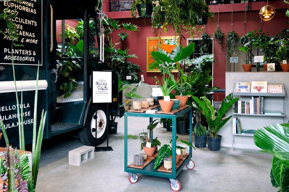Tula, Plants & Design