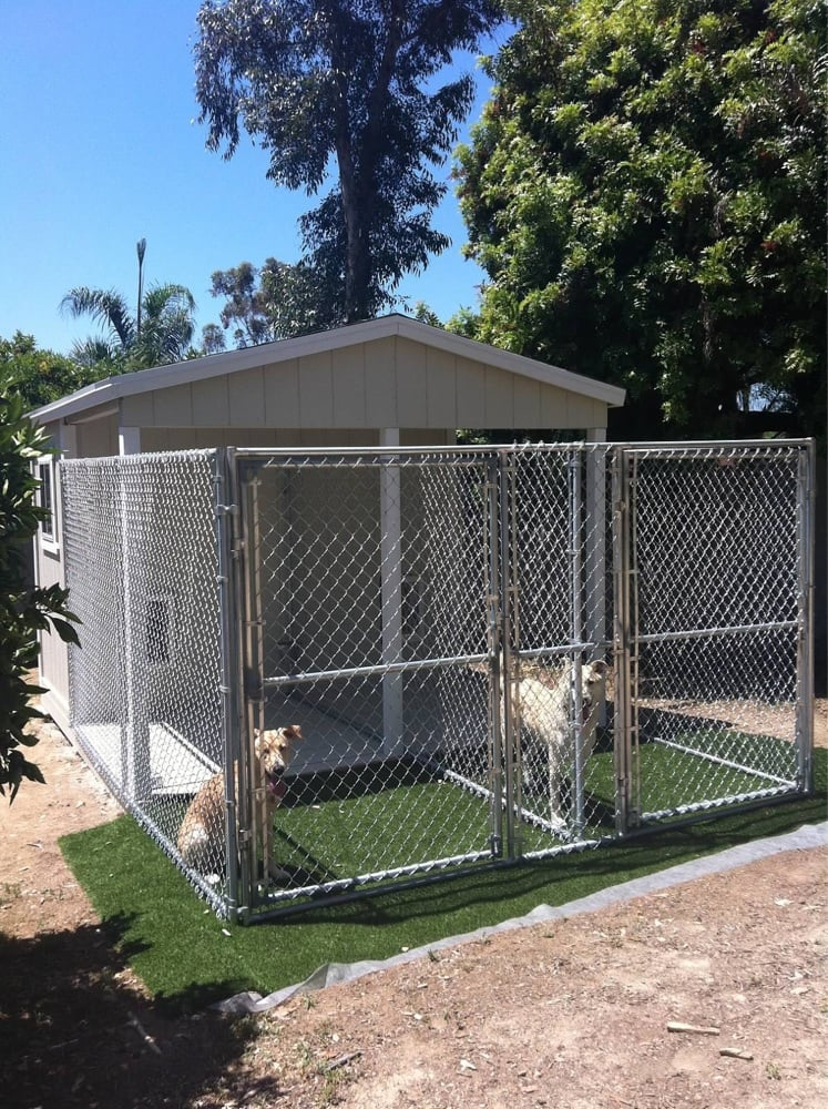 Kennel Grade Chain Link Fence Surrounding The Dog S Double