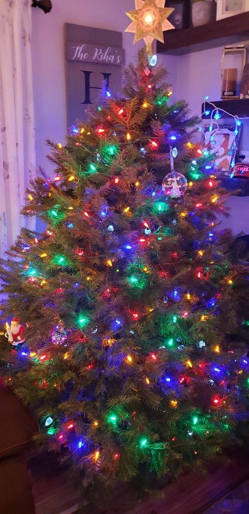 Charlie Browns Christmas Tree Farm: 231 Adamic Hill Rd, Milford, NJ