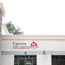 Uptown Animal Hospital & 24 Hour Emergency - (New) 12 Photos
