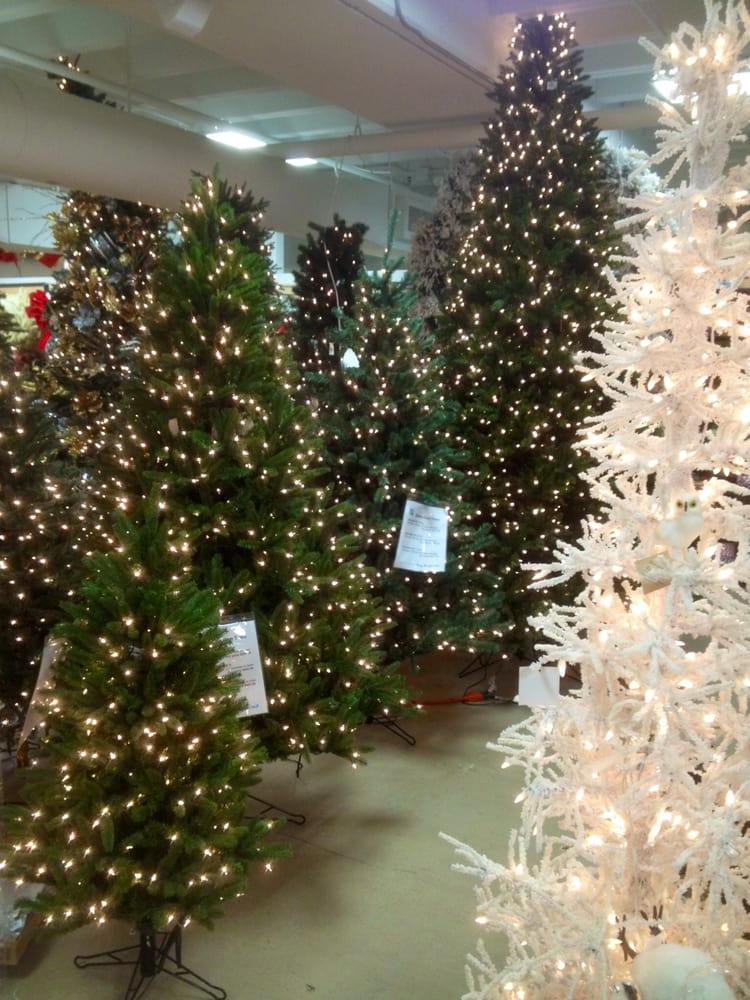 20 photos for dallas design supply - Barcana Christmas Trees