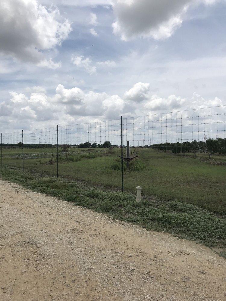 Born In Zorn Farm: 395 Old Seguin Rd, San Marcos, TX