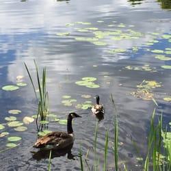 Photo Of Lake Katherine Nature Center Botanic Gardens Palos Heights Il United
