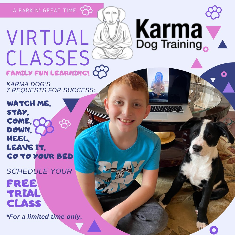 Karma Dog Training