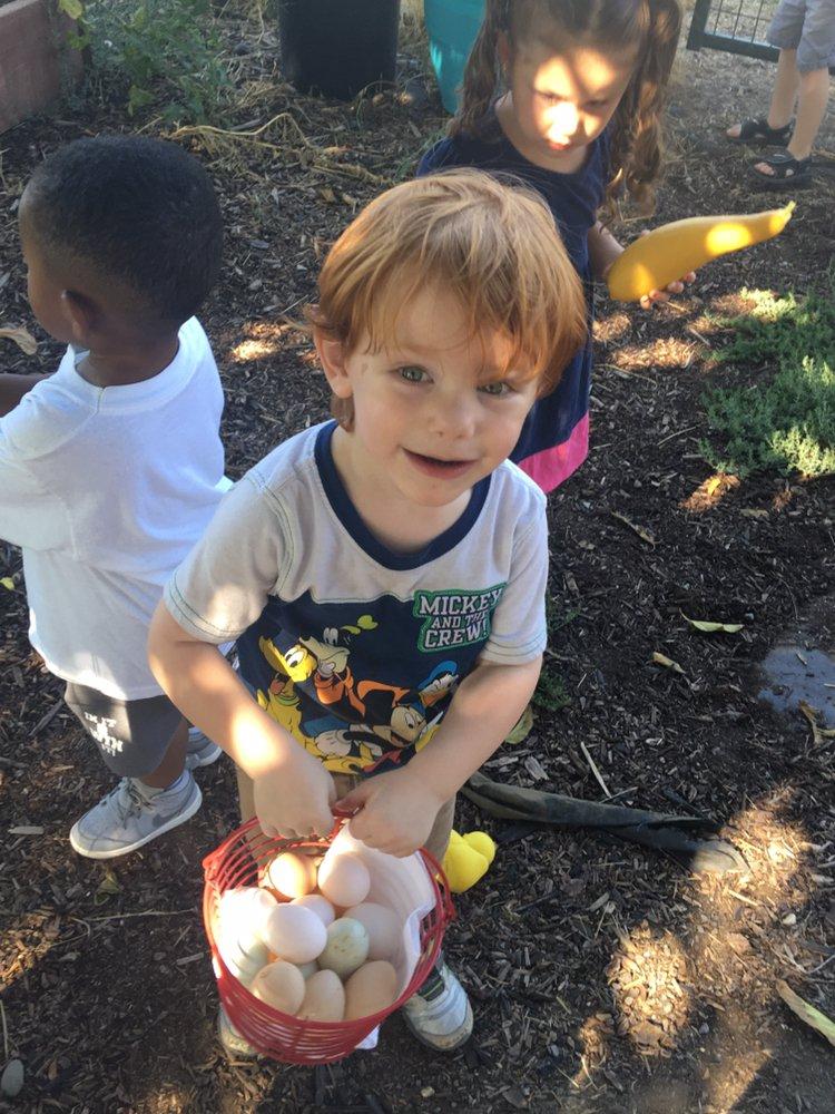 Little Adventures Childcare: 7431 N Meridian Rd, Vacaville, CA