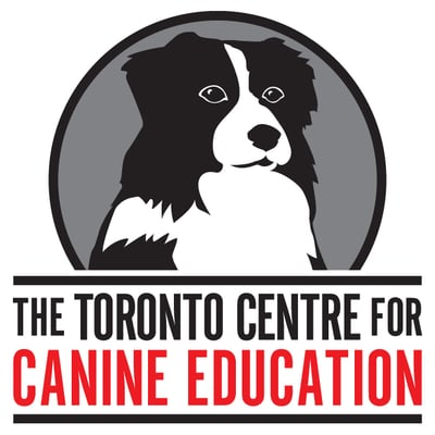 Mindful Behaviors Positive Dog Training In Milton Milton On