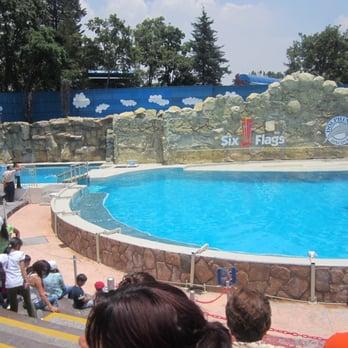 Six Flags 97 Fotos Y 24 Resenas Parque De Atracciones Crtra