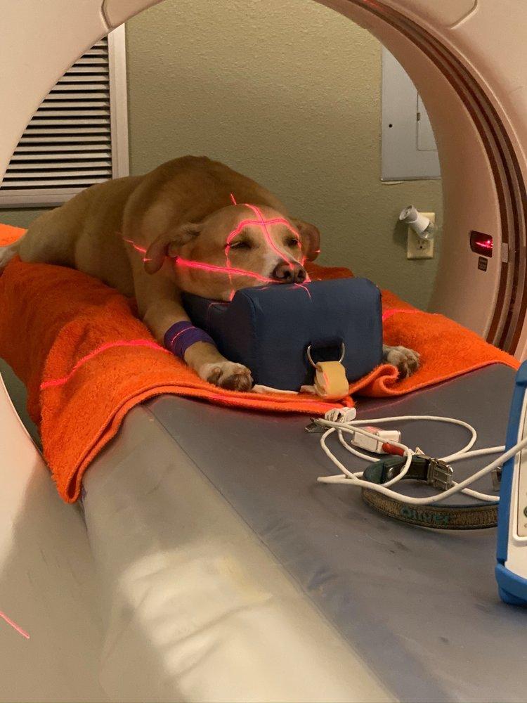 Austin Veterinary Diagnostic Hospital: 9324 Hwy 290 W, Austin, TX
