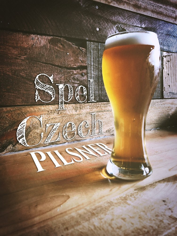 Levity Brewing: 1380 Wayne Ave, Indiana, PA